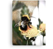 Bee utiful Canvas Print