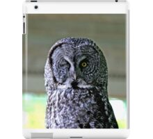 Here's Looking at You...........Kiddo iPad Case/Skin