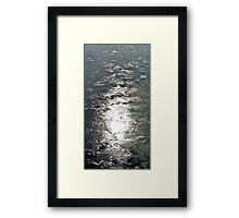 Sago No. 53 Framed Print