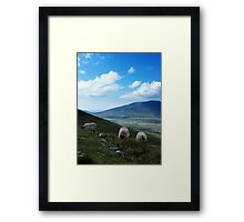 3 Sheeps To The Wind Framed Print