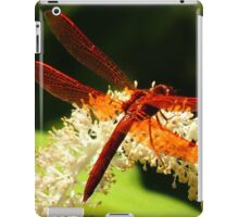 Flame Skimmer iPad Case/Skin