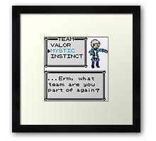 Team Mystic - Pokemon Framed Print
