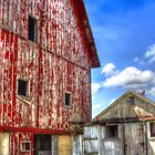 Abandoned Barn near Hampshire Illinois by Roger Passman