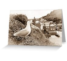 Port Isaac - Port Wenn Greeting Card