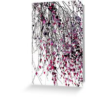 pink willow Greeting Card