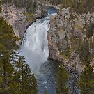 Upper Falls of the Yellowstone  by John  Kapusta
