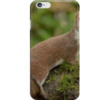 Weasel (Mustela nivalis) - III iPhone Case/Skin