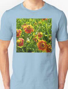 daisies 2 T-Shirt