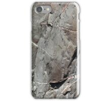 Black Canyon of the Gunnison Wall 4 iPhone Case/Skin