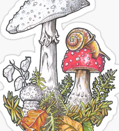Mushrooms and a snail Sticker