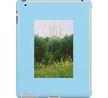 Landscape with Dead Trees iPad Case/Skin