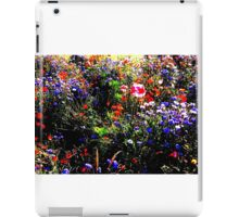 Riot of Colour iPad Case/Skin