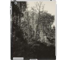 Summer Trees iPad Case/Skin