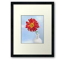 Gerbera Daisy in a White Vase Framed Print