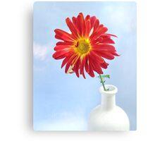 Gerbera Daisy in a White Vase Canvas Print