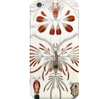 Plants & Animals, ocean, sea creature, Copepods, crabs, marine, psychedelic, art, illustration, haeckel,  iPhone Case/Skin