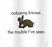 Nobunny Knows Poster