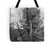 Old Tree 3 Colorado National Monument BW Tote Bag