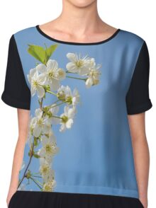 Apple blooming with blue sky Chiffon Top
