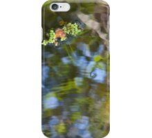 A Little Surreal Art  iPhone Case/Skin