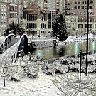 Snow in Greenville by Darlene Lankford Honeycutt