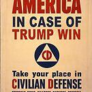 Trump Win Warning by Edward Fielding
