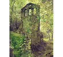 Ruins in the Forest Photographic Print