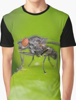 Weathered Looking Fly Graphic T-Shirt