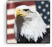 Patriot - Print Canvas Print