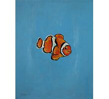 Clownfish Photographic Print