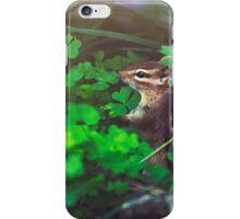 Squirrel in loving nature iPhone Case/Skin