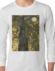 Pecan Tree and Moon Long Sleeve T-Shirt
