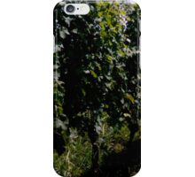 Summer Vineyard iPhone Case/Skin