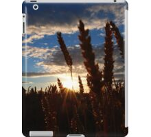 THE SUN GOING DOWN IN THE DALES iPad Case/Skin