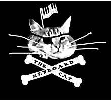 Keyboard Cat Pirate Photographic Print
