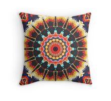 Concentric Balance of Colors Throw Pillow