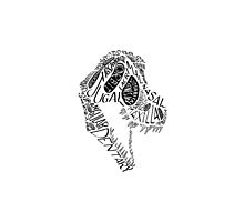 Black Calligram Tyrannosaur Skull by cubelight