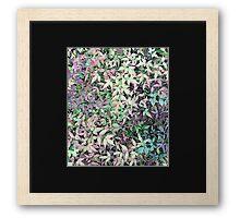 Spring leaves. Framed Print