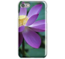 The Lotus Flower iPhone Case/Skin
