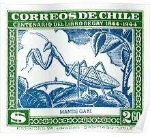 Antique 1948 Chile Praying Mantis Postage Stamp Poster