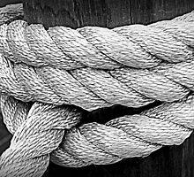 Rope by Thad Zajdowicz