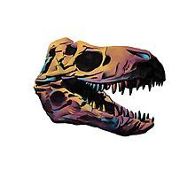 T. Rex Skull Fossil Illustration Photographic Print