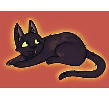 Kiki cat Photographic Print