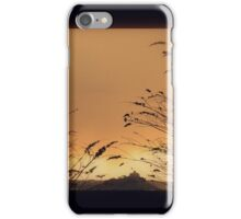 Shade of Penzance iPhone Case/Skin