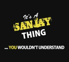 It's A SANJAY thing, you wouldn't understand !! by satro