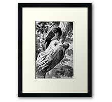 Looks Empty.  Framed Print