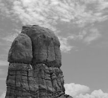 Arches National Park 6 BW by marybedy