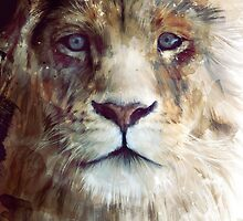 Lion // Majesty by Amy Hamilton