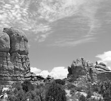 Arches National Park 7 BW by marybedy