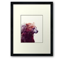 Bear // Calm Framed Print